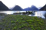 Sunrise at Milford Sound. Low tide.